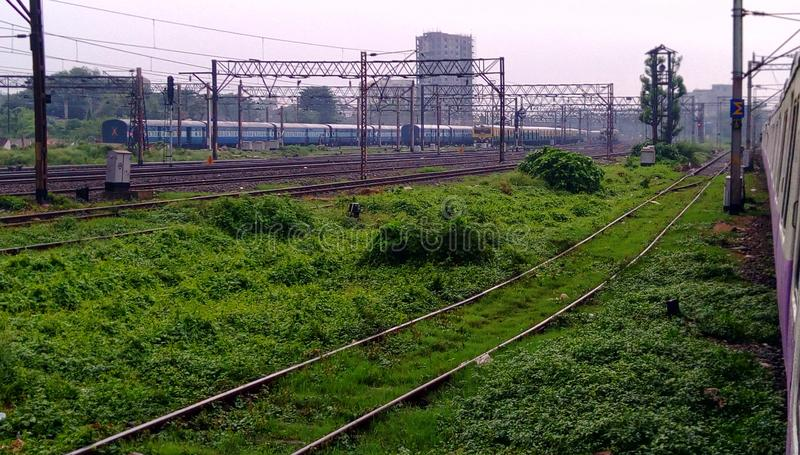 There are several railway tracks in green grass and many trains standing stock photos
