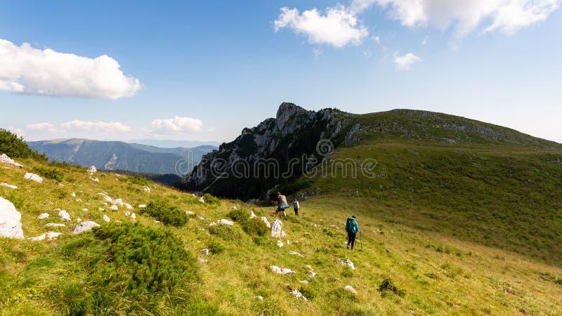 Friends hiking through the wilderness of Buila Vanturarita National Park in Romania stock photos