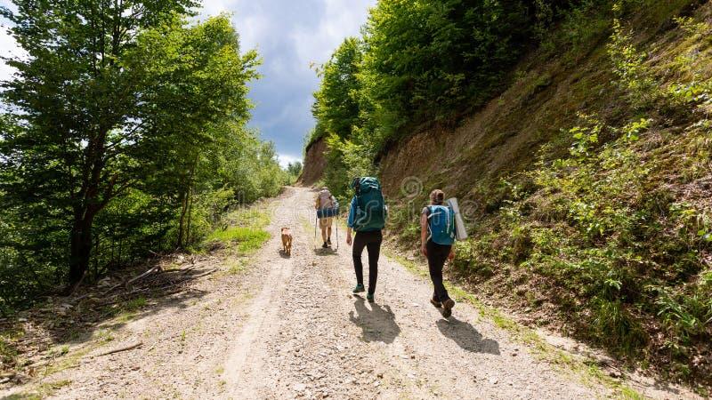 Friends hiking through the wilderness of Buila Vanturarita National Park in Romania stock images