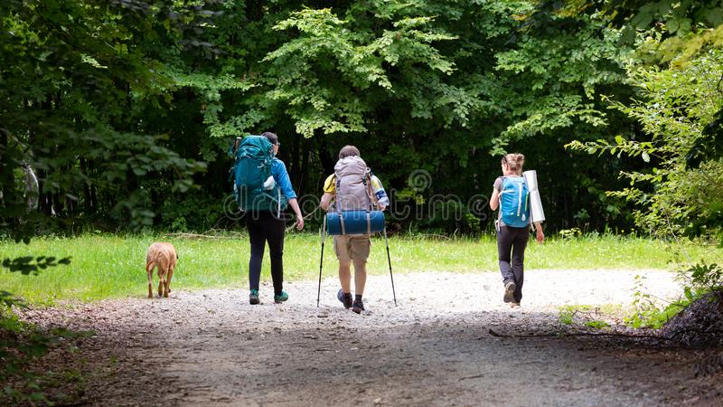 Friends hiking through the wilderness of Buila Vanturarita National Park in Romania royalty free stock images
