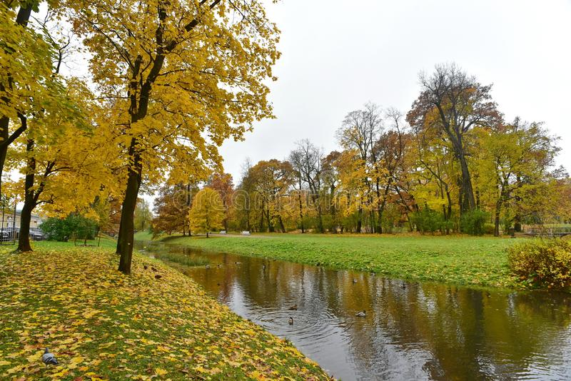 There are yellow trees and green grass on both sides of the river stock images