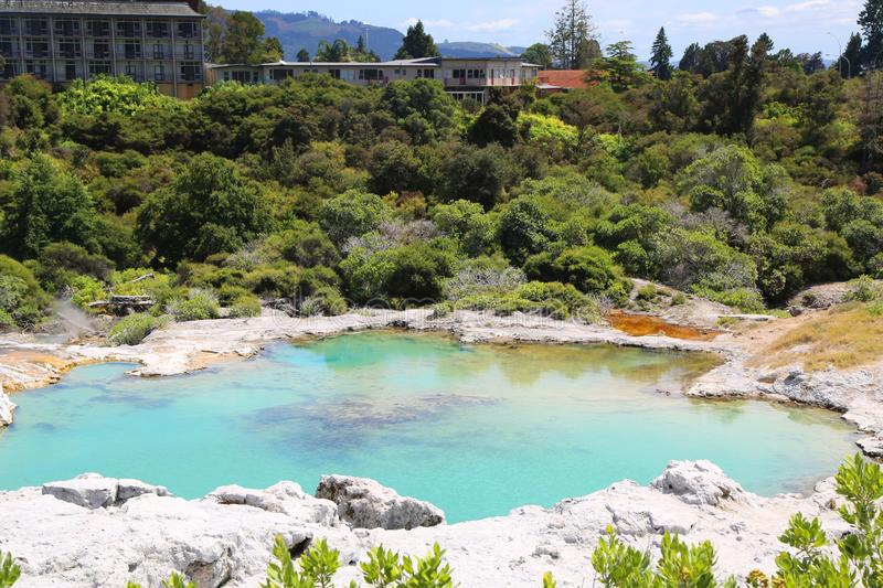 Thermal lake in Te Puia National Park, Rotorua, New Zealand. stock photos