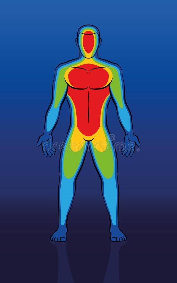 Thermisch Beeld Mannelijk Lichaam Front View vector illustratie