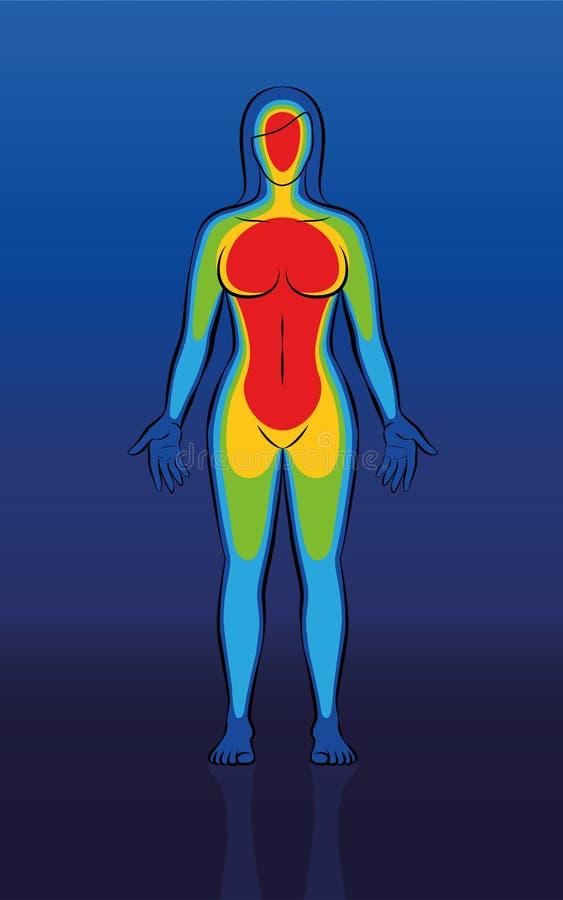 Thermisch het Beeld Vrouwelijk Lichaam van de lichaamshitte royalty-vrije illustratie