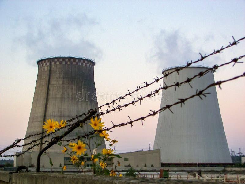 Thermo-elektrische installatie en bloemen stock afbeeldingen