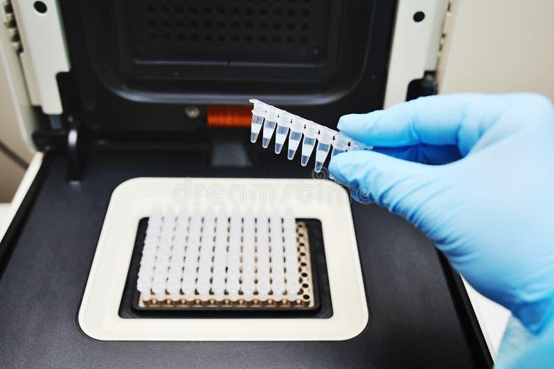 Thermocycler para las pruebas de la DNA y de la polimerización en cadena fotografía de archivo libre de regalías