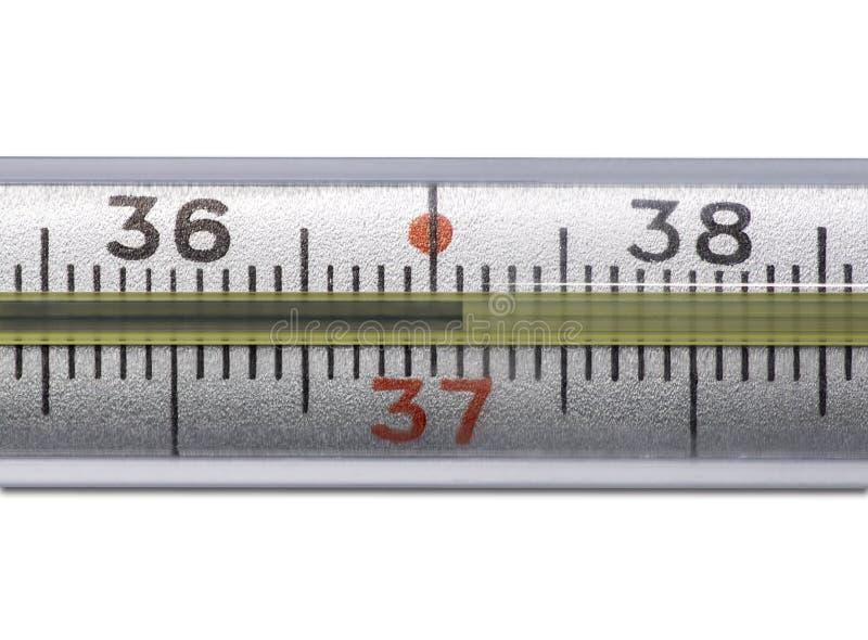 Thermomètre à mercure montrant la haute température sur un fond blanc photographie stock