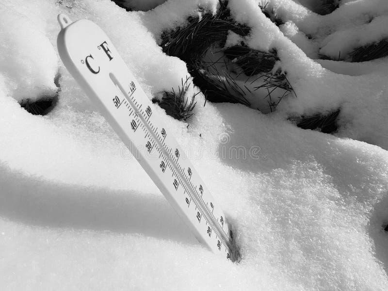 Thermomètre de rue avec une température de Celsius et de Fahrenheit dans la neige à côté d'un jeune pin images libres de droits