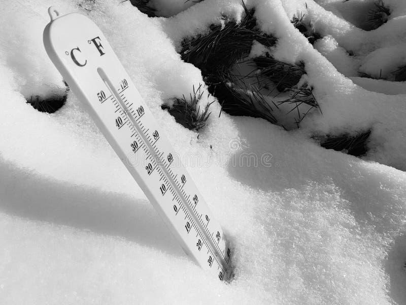 Thermomètre de rue avec une température de Celsius et de Fahrenheit dans la neige à côté d'un jeune pin photographie stock libre de droits