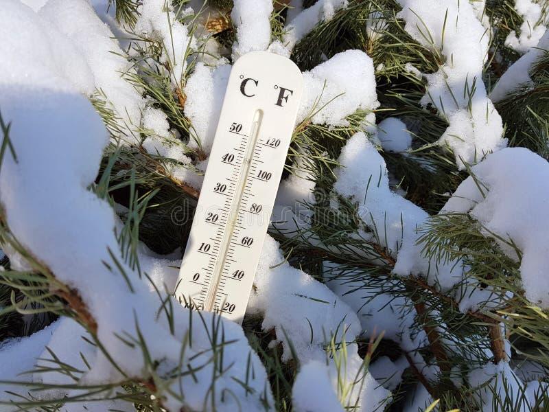 Thermomètre de rue avec une température de Celsius et de Fahrenheit dans la neige à côté d'un jeune pin photographie stock