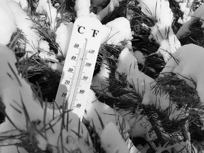 Thermomètre de rue avec une température de Celsius et de Fahrenheit dans la neige à côté d'un jeune pin images stock