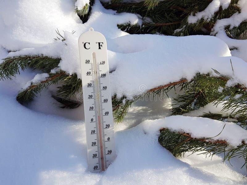 Thermomètre de rue avec une température de Celsius et de Fahrenheit dans la neige à côté d'un jeune pin photos stock