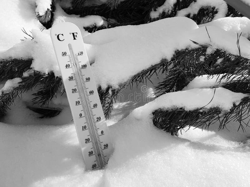 Thermomètre de rue avec une température de Celsius et de Fahrenheit dans la neige à côté d'un jeune pin photo stock