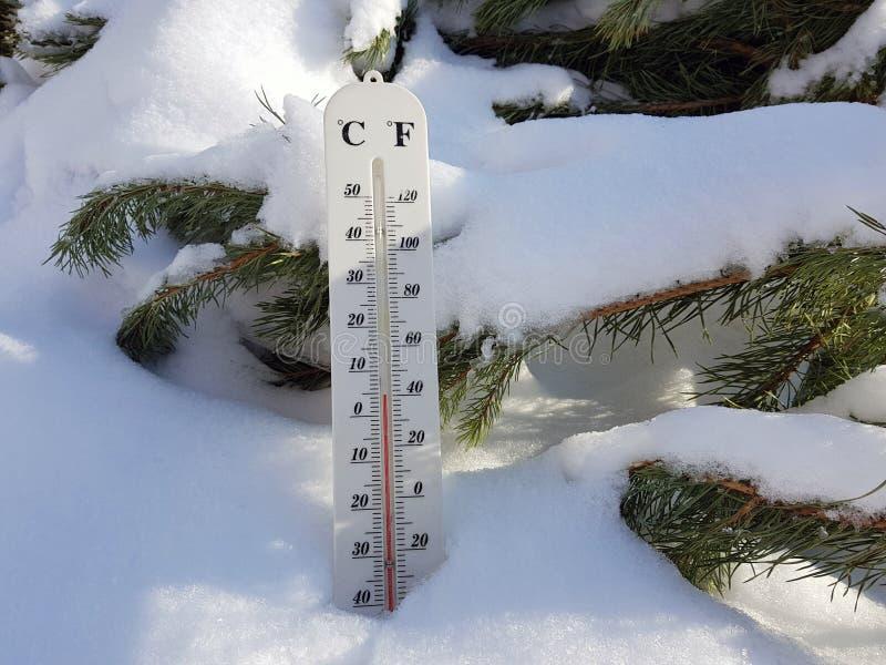 Thermomètre de rue avec une température de Celsius et de Fahrenheit dans la neige à côté d'un jeune pin image libre de droits