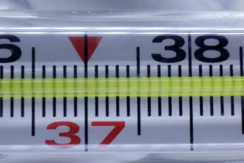 Thermomètre médical dans le macro avec la température photo libre de droits