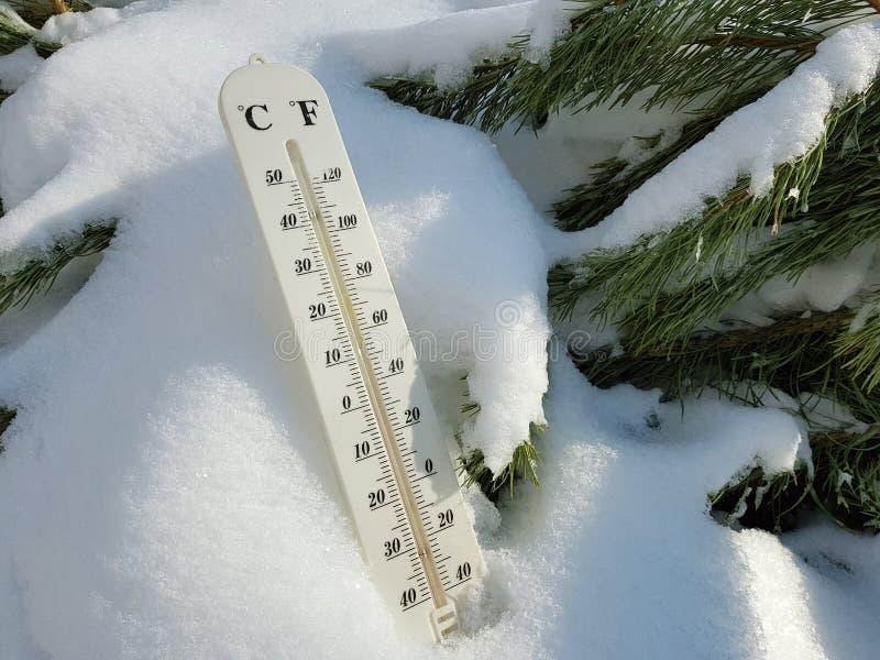 Thermom?tre de rue avec une temp?rature de Celsius et de Fahrenheit dans la neige ? c?t? d'un jeune pin images stock