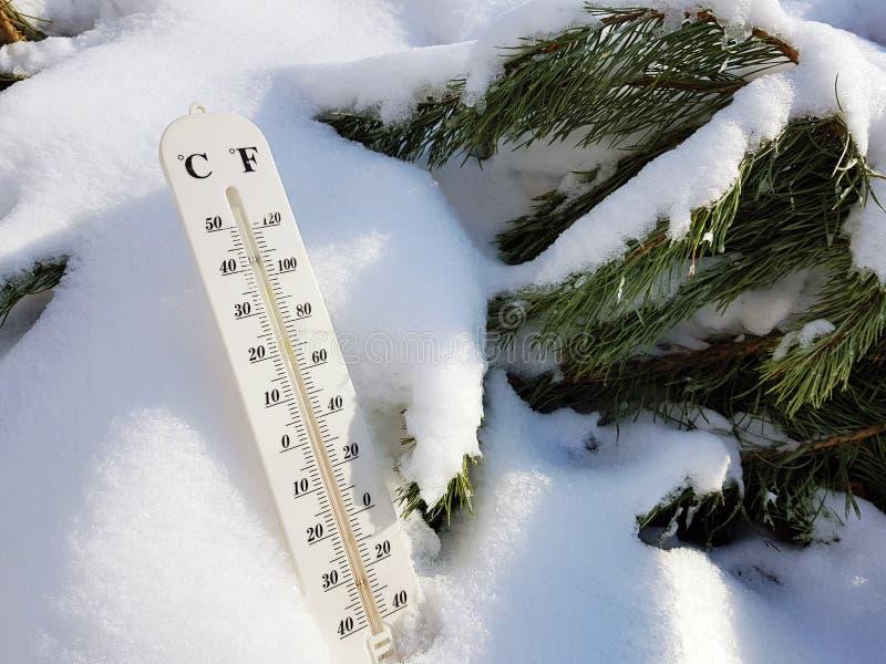 Thermom?tre de rue avec une temp?rature de Celsius et de Fahrenheit dans la neige ? c?t? d'un jeune pin photo stock