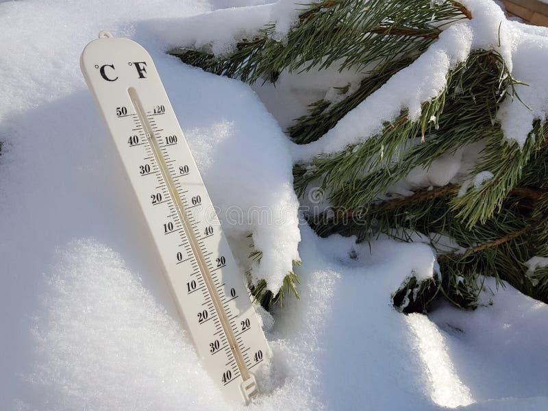 Thermom?tre de rue avec une temp?rature de Celsius et de Fahrenheit dans la neige ? c?t? d'un jeune pin image libre de droits