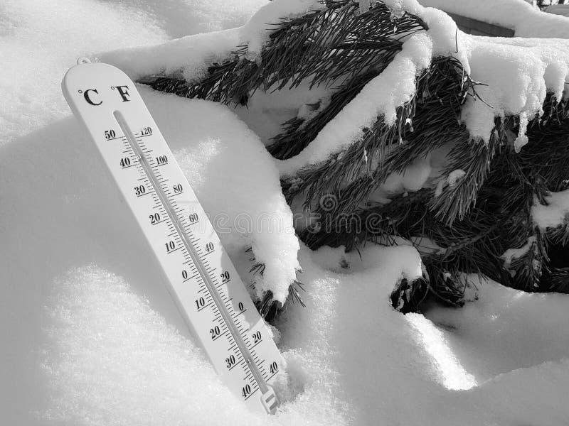 Thermom?tre de rue avec une temp?rature de Celsius et de Fahrenheit dans la neige ? c?t? d'un jeune pin photographie stock