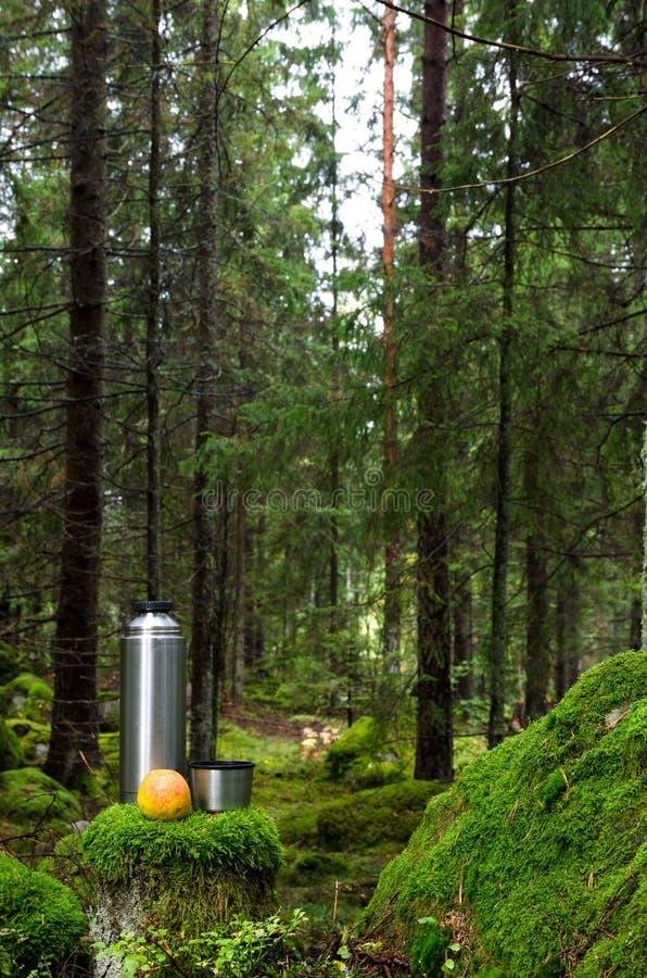 Thermos y manzana en bosque cubierto de musgo fotos de archivo