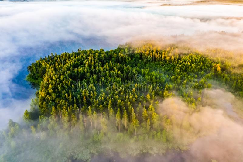 Thick fog covers green forest and blue lakes. Beautiful morning landscape, aerial view stock image