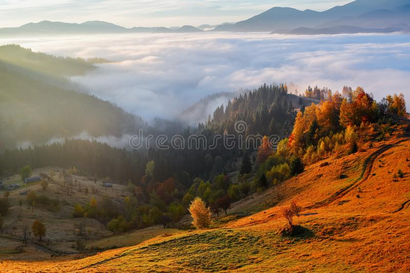 Thick fog, like milk, covered the valley, behind which rise mountain hills, on which fall warm rays of the sun. royalty free stock image