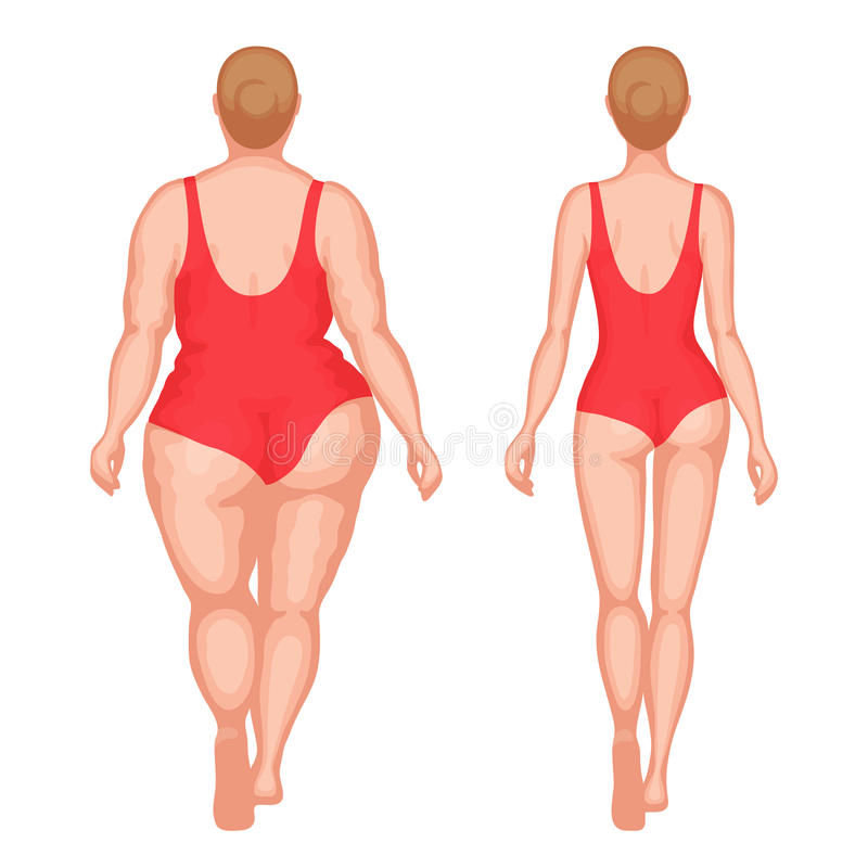Thick woman and slender woman. Obese woman and slender woman dressed in red swimsuits. Back view. Healthy lifestyle and unhealthy lifestyle concept royalty free illustration
