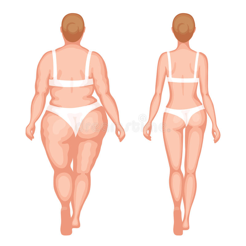 Thick woman and slender woman. Obese woman and slender woman in white underwear. Back view. Healthy lifestyle and an unhealthy lifestyle concept royalty free illustration