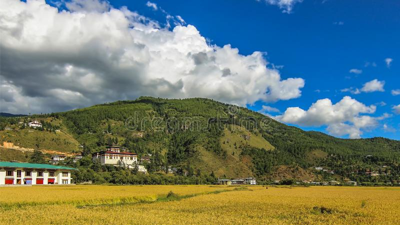 Thimpu和Tashichho Dzong草原  免版税库存图片