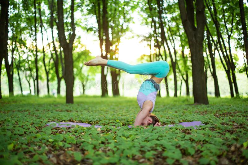 Thin brunette girl plays sports and performs yoga poses in a summer park on a sunset background. Woman doing exercises on the yoga stock photos