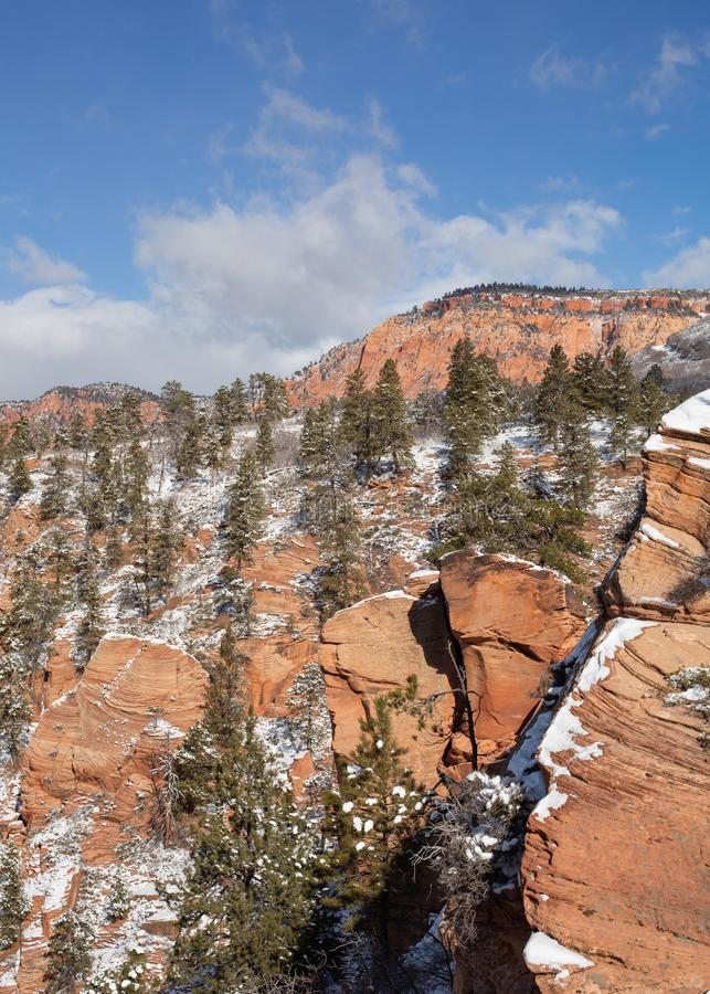 A thin layer of snow dusts the red rocks and green pines on Southern Utah on the Kolob terrace road stock photos