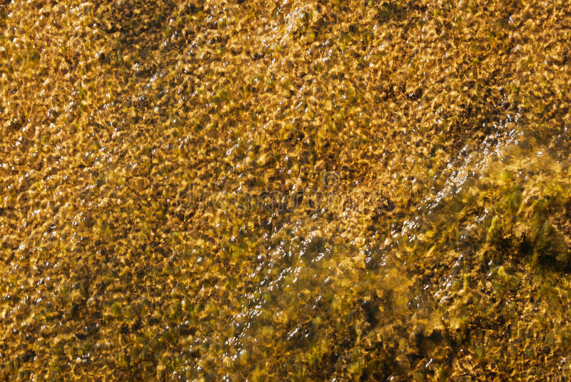 Thin Layer Of Water Royalty Free Stock Photos
