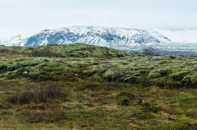 Download Thingvellir National Park Stock Photo - Image: 83705127