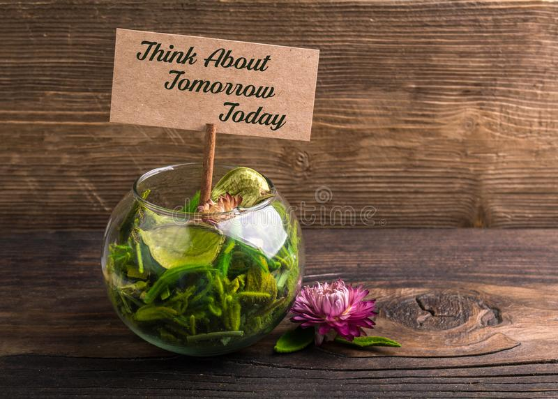Think about tomorrow today. Text on sign board with flower and leafs on wood stock image