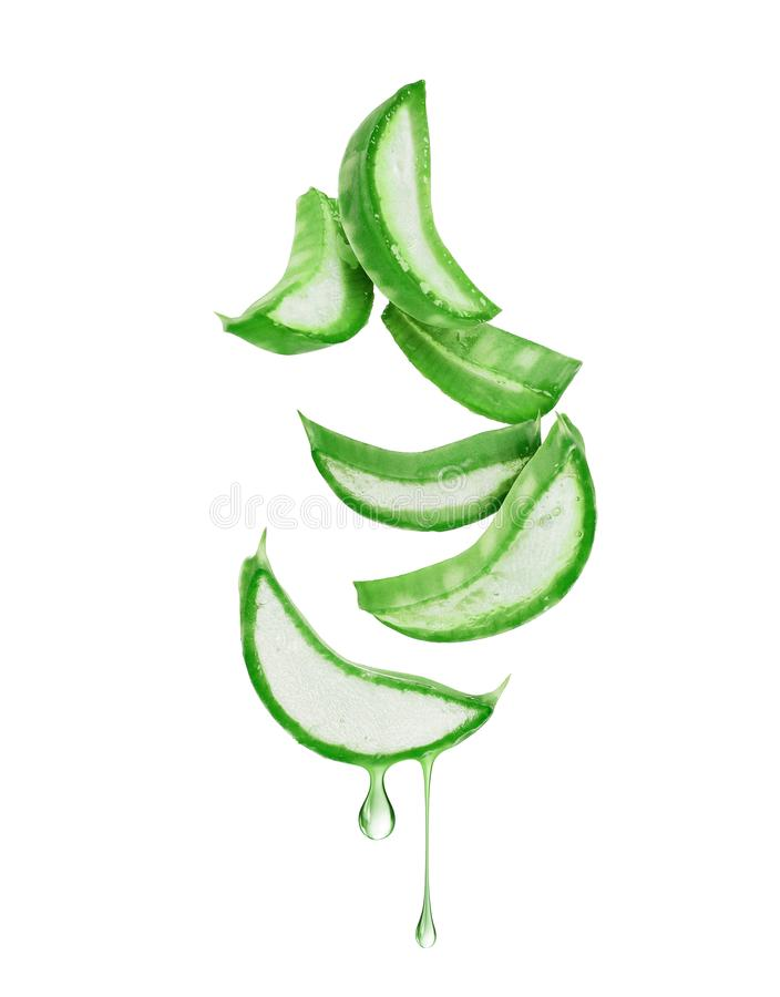 Thinly sliced stem of aloe vera with drops of juice.  royalty free stock image