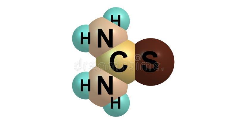 Thioharnstoffmolekülstruktur lokalisiert auf Weiß vektor abbildung