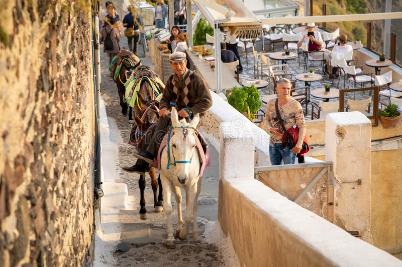 Thira, Santorini - 18.10.2018: Man on Traditional Donkey on Stairs in Thira, Santorini Island, Greece royalty free stock photo