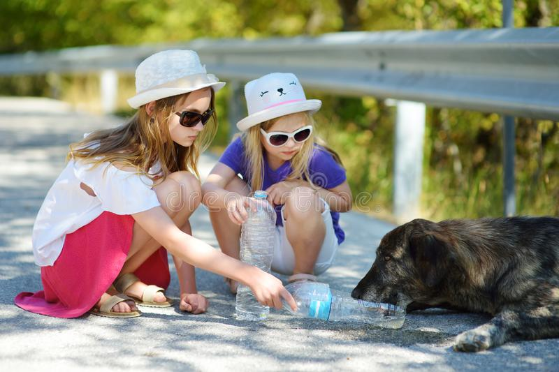 Thirsty black stray dog drinking water from the plastic bottle on hot summer day. Two kids giving cool water to thirsty dog. Caring for animals during extreme stock images