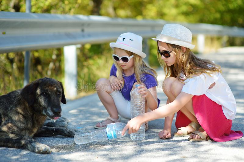 Thirsty black stray dog drinking water from the plastic bottle on hot summer day. Two kids giving cool water to thirsty dog. Caring for animals during extreme royalty free stock photo
