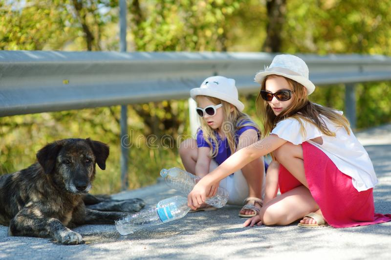 Thirsty black stray dog drinking water from the plastic bottle on hot summer day. Two kids giving cool water to thirsty dog. Caring for animals during extreme royalty free stock photography