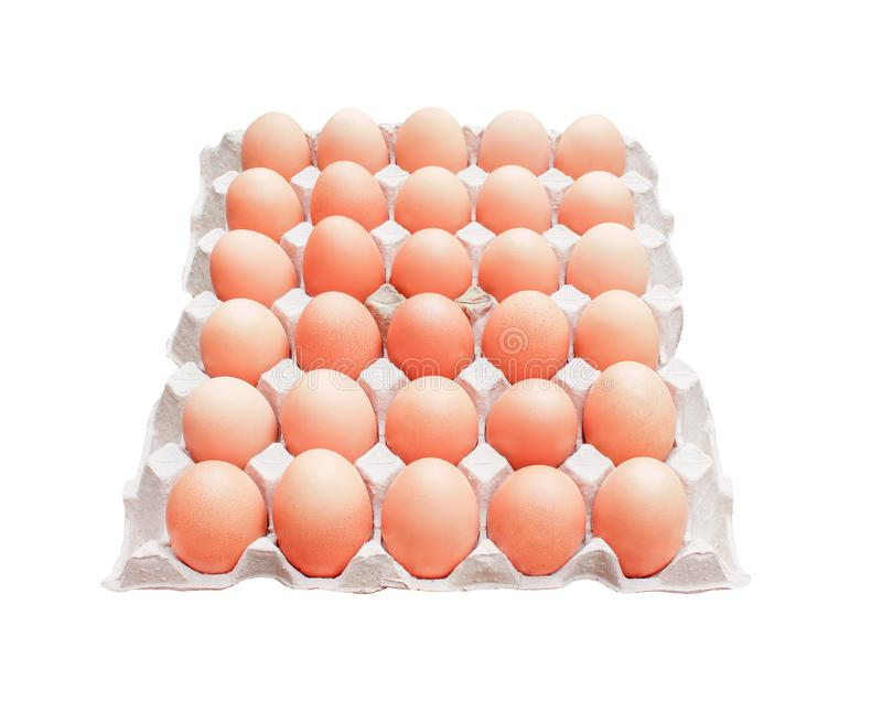 Thirty raw eggs with nature speckled in the carton box tray isolated on white background with clipping path royalty free stock images