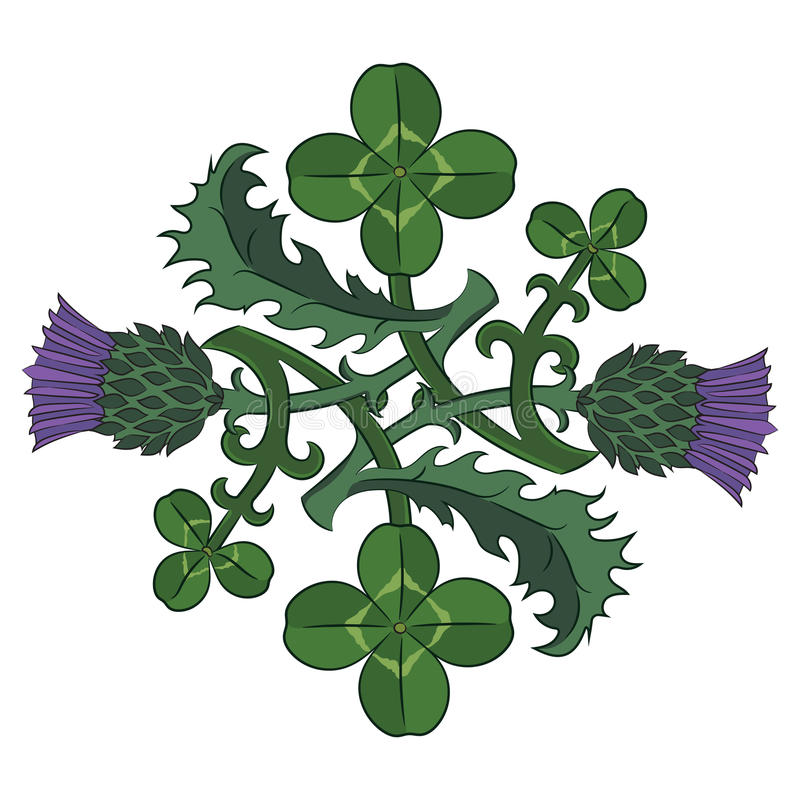 Free Thistle And Clover. The Symbols Of Ireland And Scotland. Twisted Clover And Thistle Royalty Free Stock Photos - 81400778