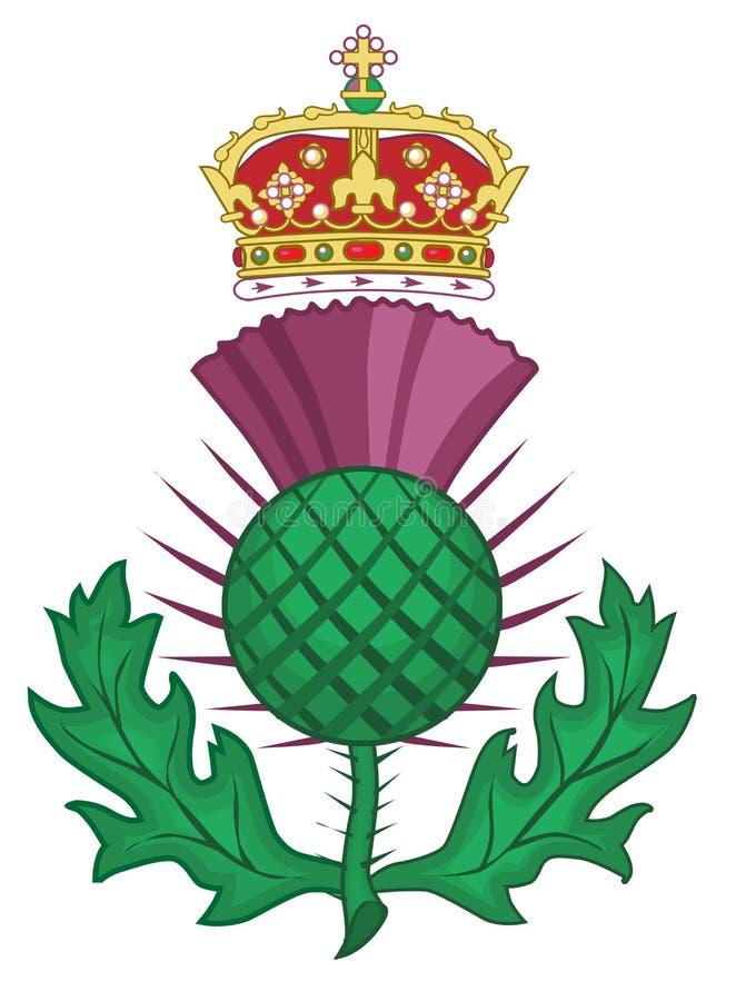 Free Thistle Symbol Of Scotland On White Royalty Free Stock Photo - 116701125