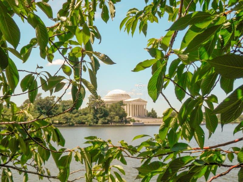Thomas Jefferson Memorial moldou pelas folhas fotografia de stock royalty free