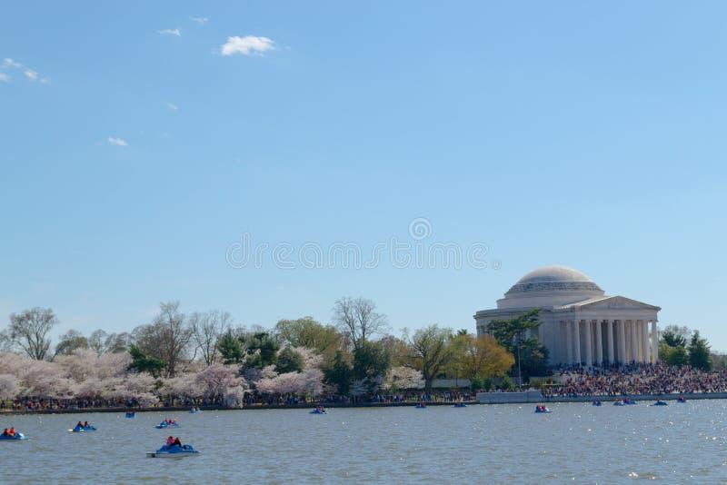 Thomas Jefferson pomnik podczas Czereśniowego okwitnięcia festiwalu zdjęcie stock