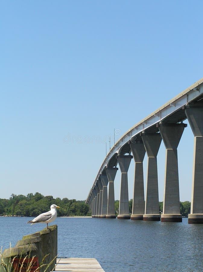 Thomas Johnson Bridge 2 royalty free stock photography