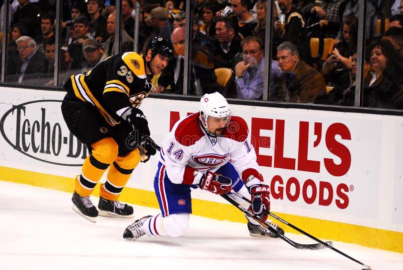 Thomas Plekanec Montreal Canadiens. Thomas Plekanec of the Montreal Canadiens loses his balance going into the corner followed by Zdeno Chara of the Boston royalty free stock images