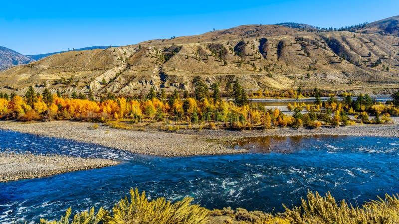 Thompson rzeka przy Spences mostem w Kanada BC obrazy stock