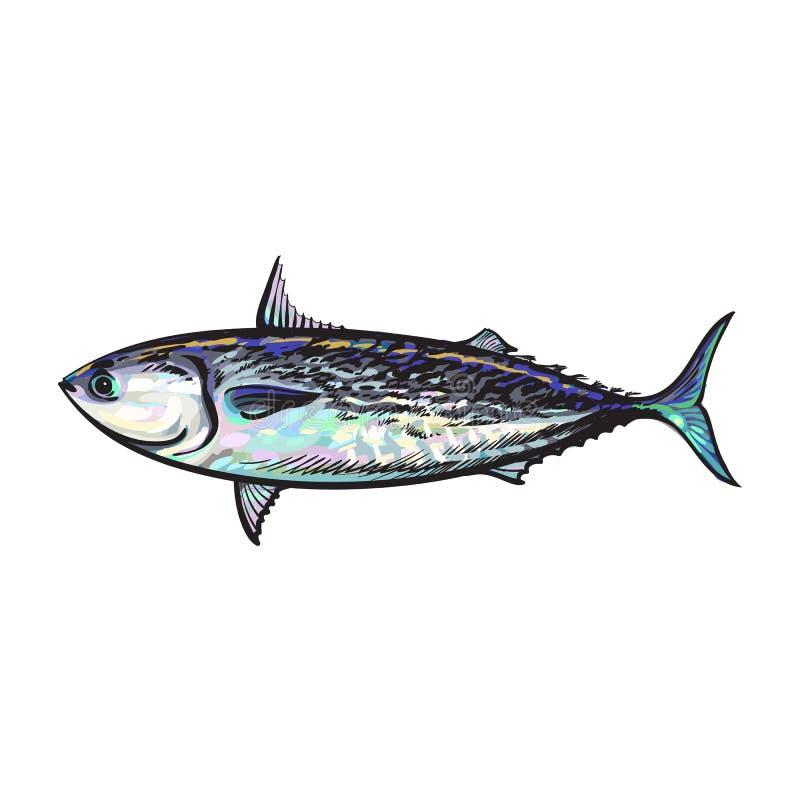 Thon de poisson de mer de bande dessinée de croquis de vecteur d'isolement illustration stock