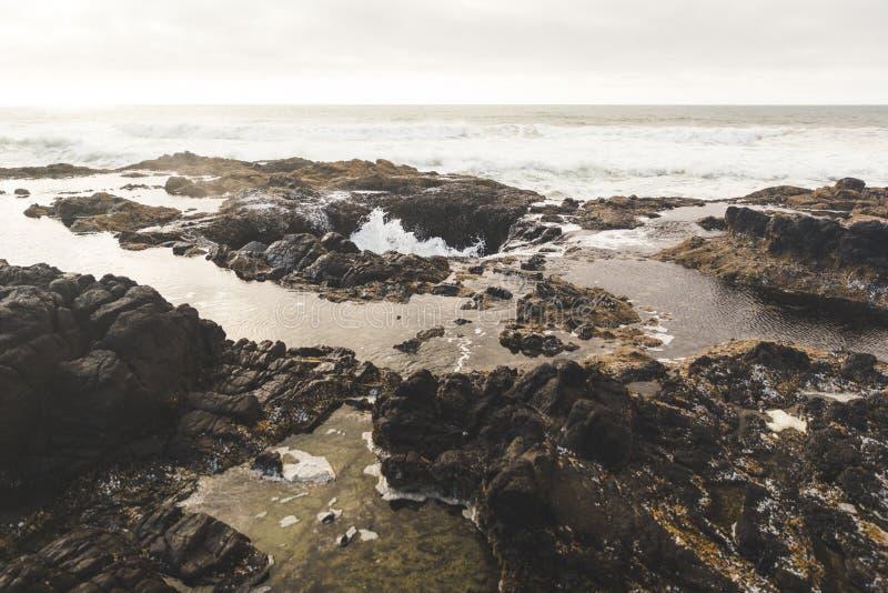 Thor& x27; s bem na costa de Oregon imagens de stock